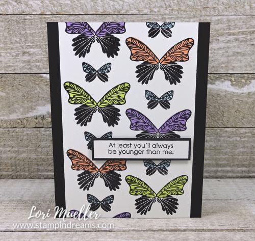 OSATHop-ButterflyGalaRight-Lori-DSC09350