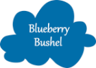 BlueberryBushel-NameCloud