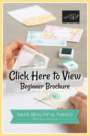 BeginnerBrochure-BlogButton600x-Lori