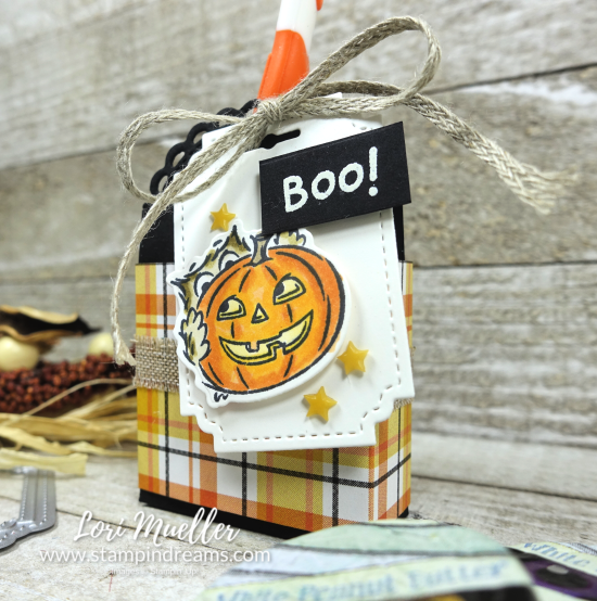 CreativeInking-Have A Hoot Toothbrush Treat Box-LTClose-Lori-DSC03026