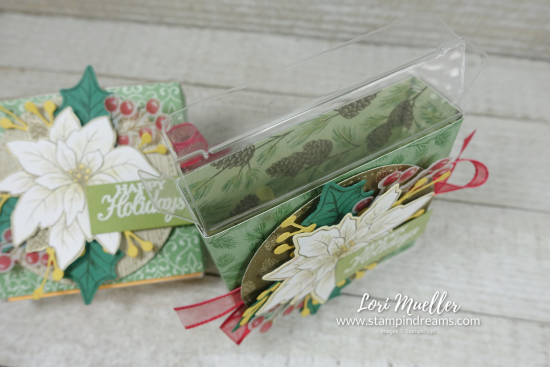 Poinsettia Petals 3x3 Acetate Gift Box Inside - Lori Stampin Dreams-DSC03678